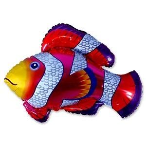 Купить Шар Рыба в Киеве