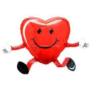 Купить Ходячий Шар Сердце в Киеве