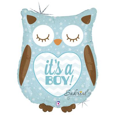 Сова its a boy